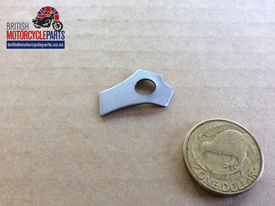 06-0395 LOCKING PLATE - CHAINCASE