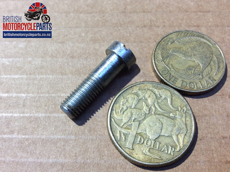 21-2048 Lever Pivot Screw - Clutch/Brake