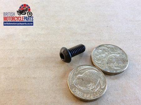 21-2106 Oil Seal Housing Screw - Triples