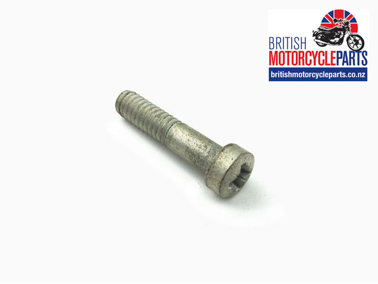 21-2191 Pivot Screw - Master Cylinder Lever - Triumph T140 T150 T160 - Auckland