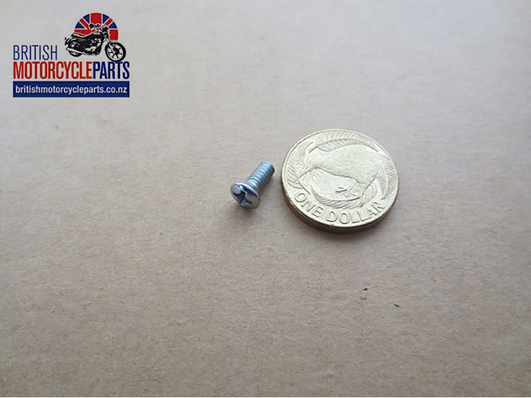 21-2196 Caliper Cover Screw - Triumph T140 T150 T160 - British Motorcycle Parts