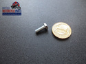 57-3719 Clutch End Cover Screw - Triples