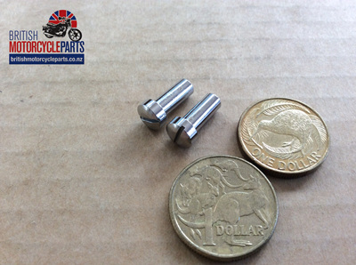 575219 Rear Tail Light Screws - Lucas 564 - PAIR