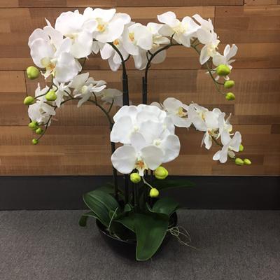 6 Stems 75cm Artificial Orchid With Black Pot