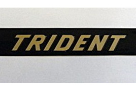 60-4391 Trident T150 Side Cover Badges