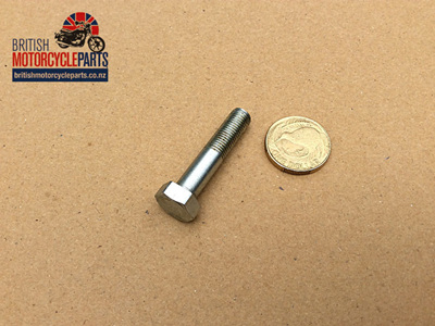 97-1070 Fork Axle Cap Bolt - Triumph