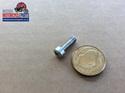 99-1188 LH Switchgear Screw Triumph 54115246