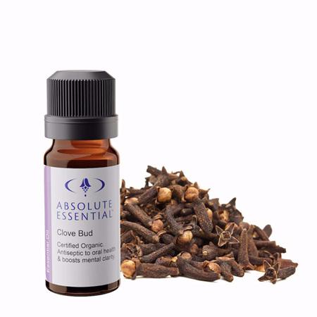 AEL Clove Bud Oil Organic 10ml
