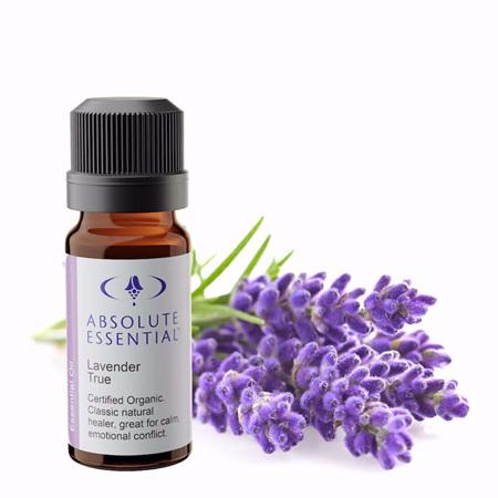 AEL Lavender True Oil Organic 10ml