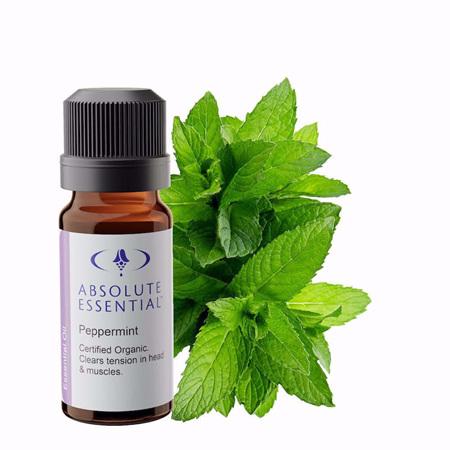 AEL Peppermint Oil Organic 10ml