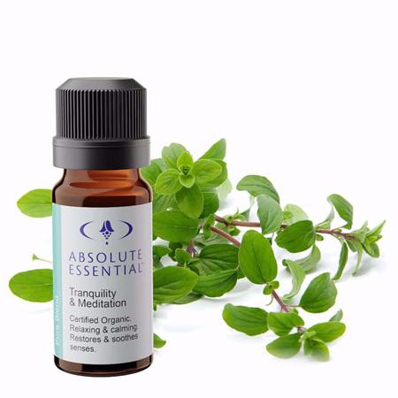 AEL Tranquility & Meditation Organic 10ml