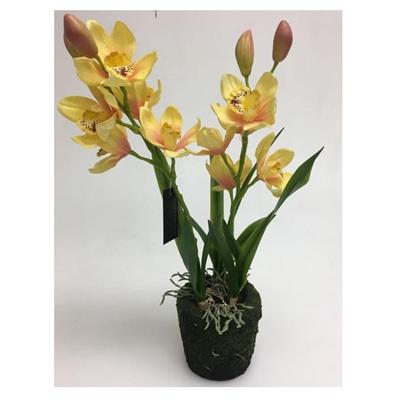 Artificial Cymbidium Orchid 2 Stems In Moss Rock Pot - 54cmh