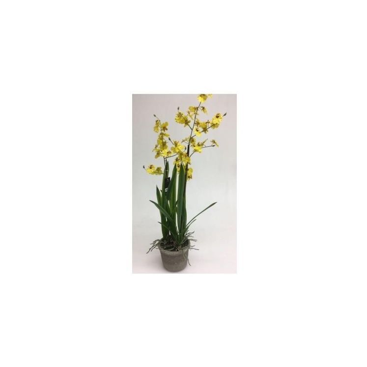 Artificial Dancing Orchid With 2 Stems In Ceramic Pot - 80 cmh