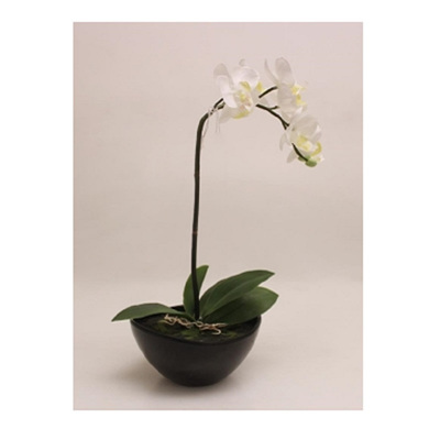 Artificial Orchid With 1 Stem 35cm - Black Pot