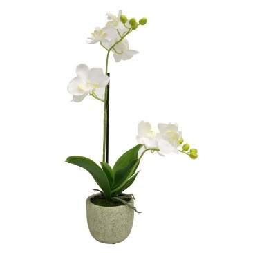 Artificial Orchid With 2 Stems 45cm - Concrete Pot