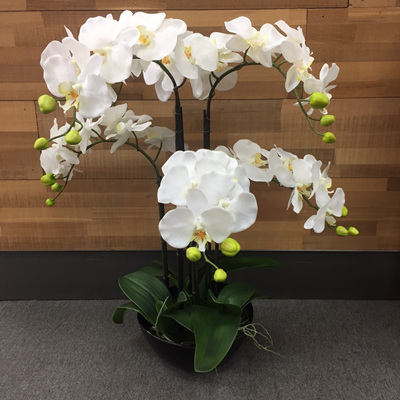 Artificial Orchid With 6 Stems In Black Pot - 6 Stems 75cmh