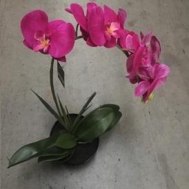 Artificial Purple Orchid With 1 Stem 47.5cm - Black Pot