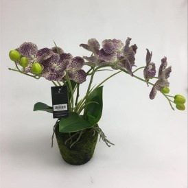 Artificial Speckled Purple Orchid With 3 Stem - 35cm