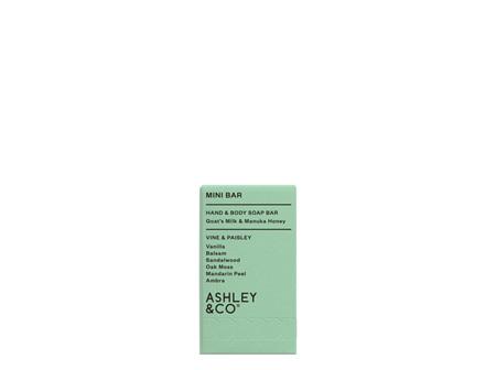 Ashley & Co Mini Bar Vine & Paisley