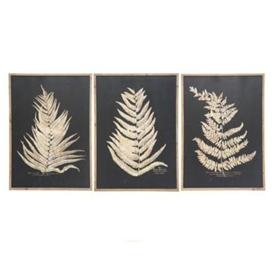 Assorted Black & Gold Fern Print - 100x70