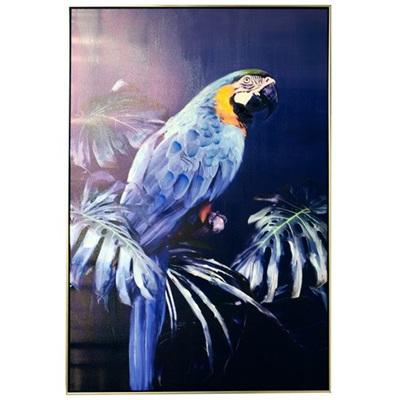 Avian Stare - Painted Print