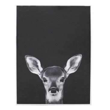 Bambi Canvas Print - Matt White Frame - 65x93cm