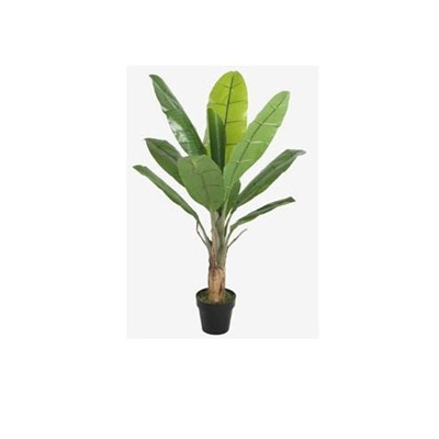 Banana Tree W/Pot - 130cm