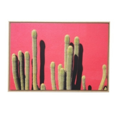 Cactus Pink Wall Classic Canvas W Timber Frame