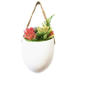 Ceramic Hanging Pot With Succulent 15cm