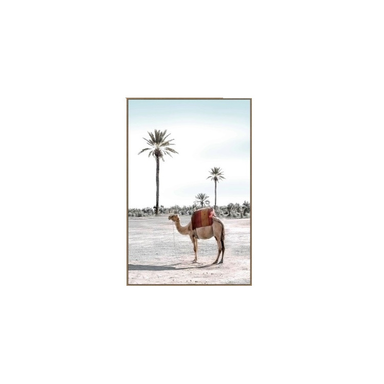 Colin Camel Canvas Print - Timber Look Frame