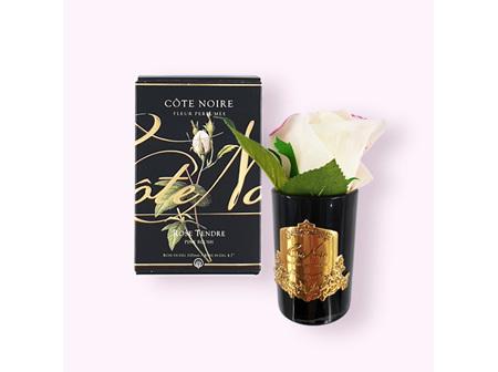 Cote Noir Fleur Perfumée -  Rose Tendre - Pink Blush