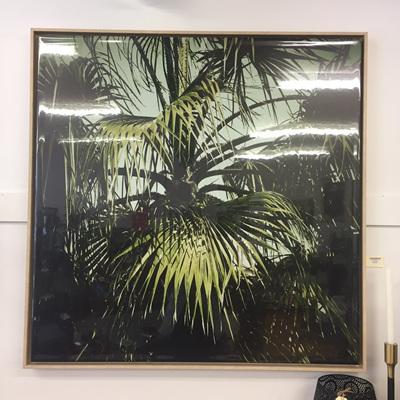 Dark Tropics Framed Gloss Canvas