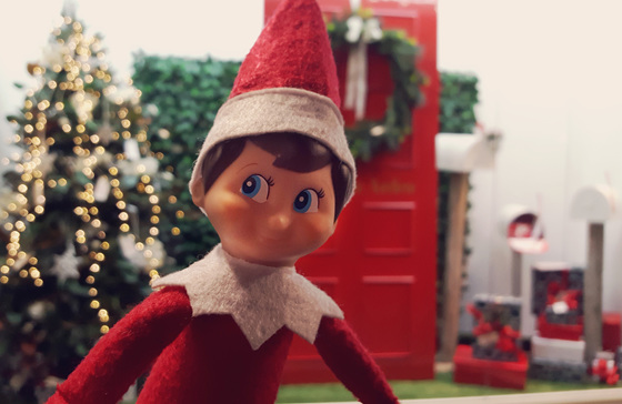 Elf on the shelf photo-bombs our window display