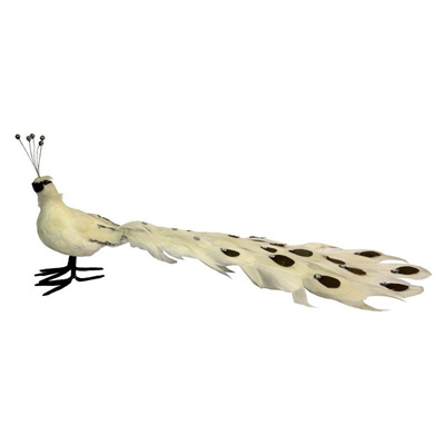 Feather Peacock - Large
