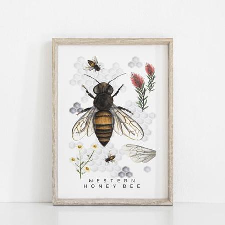 Floral & Fern Western Honey Bee A3