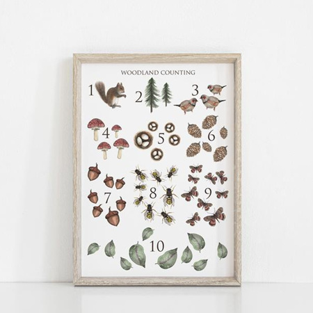 Floral & Fern Woodland Counting A3 Print