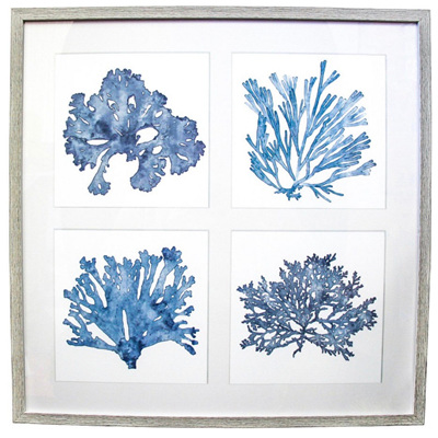 Framed Print Coral Collage