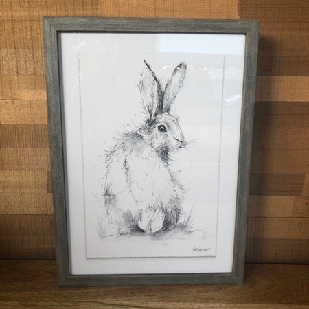 Framed Rabbit Print