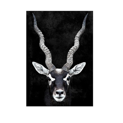 Gary Gazelle Canvas Print - Natural Frame - 100x140cm