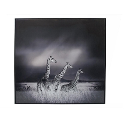 Giraffe Family Canvas Print - Matt Black Frame 100x100cm