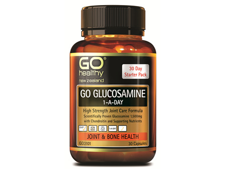 GO GLUCOSAMINE 1-A-DAY - High Strength Joint Care Formula (30 Caps)