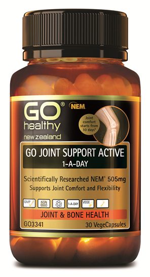 GO JOINT SUPPORT ACTIVE 1-A-DAY (30 VCAPS)