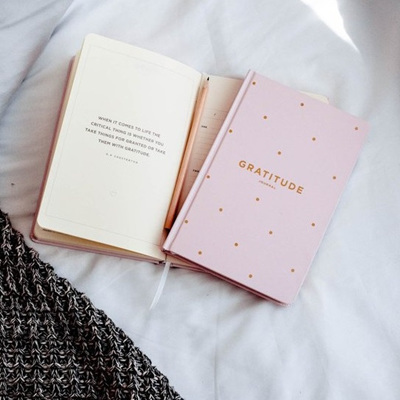 Gratitude Journal / Blush