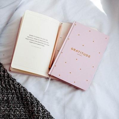 Gratitude Journal / Blush