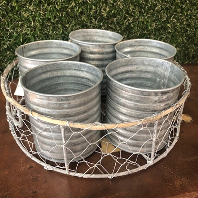 Herb Pot S/5 in Wire Crate