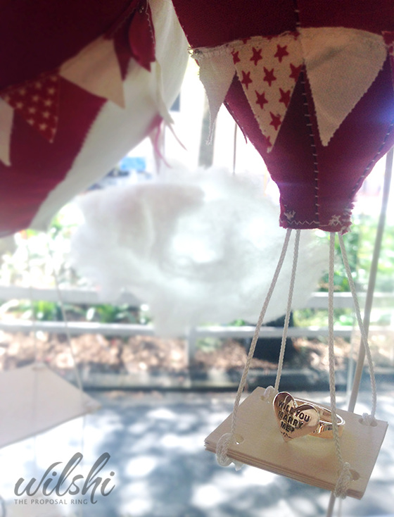 Hot Air Balloon Marriage Proposal Wilshi The Proposal Ring