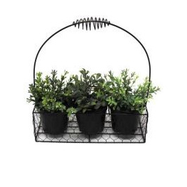 Iron Basket W/Herb Pots Included - 28cmh