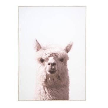 Larissa Llama Canvas Print - Natural Frame 100x140cm