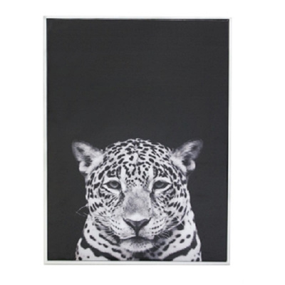 Larry Leopard Canvas Print - Matt White Frame