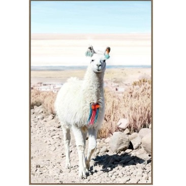 Larry Llama Canvas Print - Oak Look Frame - 80x120cm